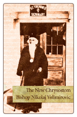 Book: The New Chrysostom: Bishop Nikolaj Velimirovic