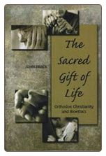 CLEARANCE Book: The Sacred Gift of Life